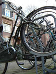 Highlight for Album: Bicycles of the rich and famous